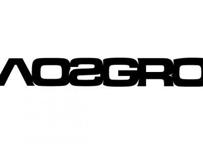 2019-03-26_5c99fe6e0c39a_Chaos_Group_logo_B